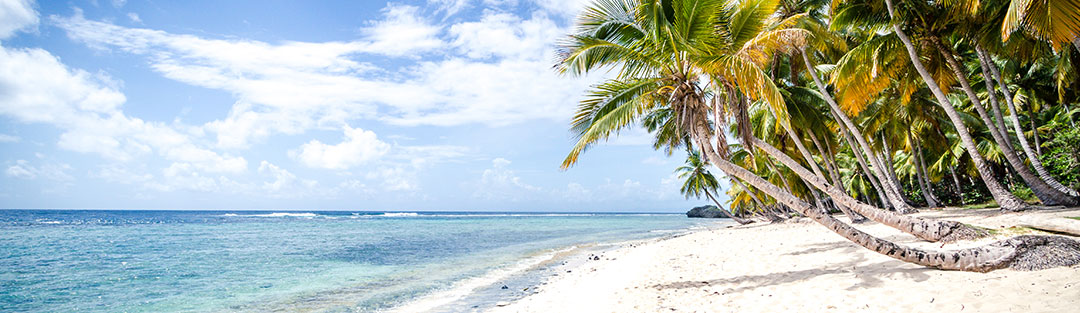wandbild meer strand palmen versandkostenfrei. Black Bedroom Furniture Sets. Home Design Ideas